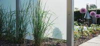 19_pflanzplanung_allium_giganteum_sichtschutz_glaswand_lavalit_hinterpflanzung_gartengestaltung_gartenplanung